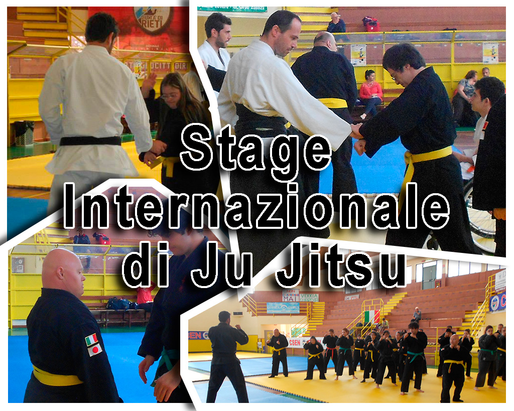 Stage Internazionale di Ju Jitsu asd yu dojo bushido ryu Pomezia