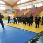 Stage Internazionale Ju Jitsu yu dojo bushido ryu ju jitsu pomezia roma