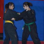 Corso di Ju Jitsu Integrato yu dojo bushido ryu ju jitsu pomezia roma