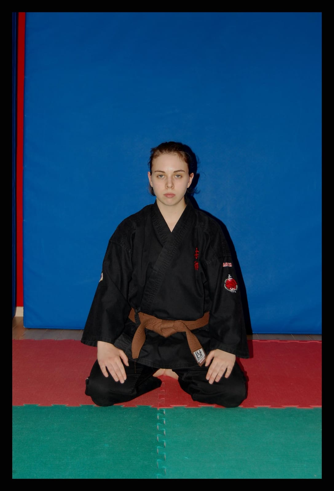 Organigramma aiuto istruttore settore jujitsu integrato