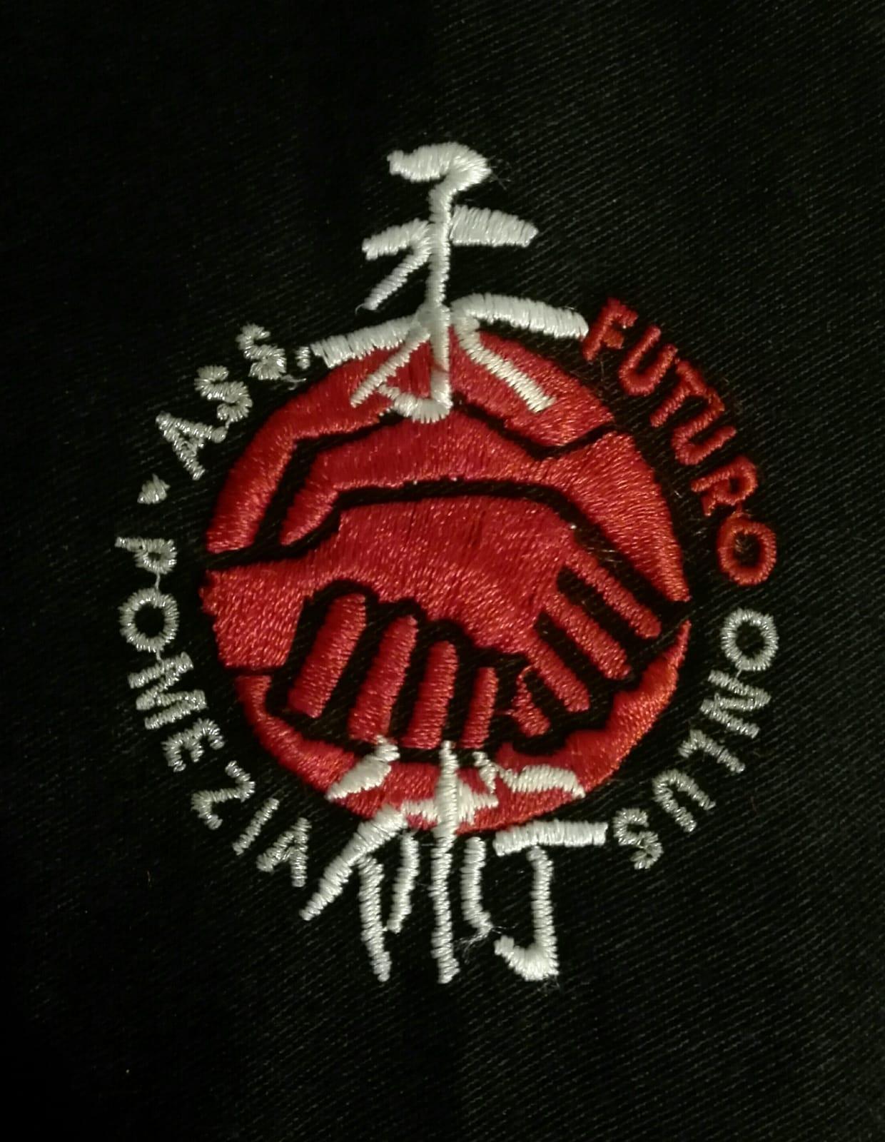 Organigramma Responsabile Settore JuJitsu Integrato
