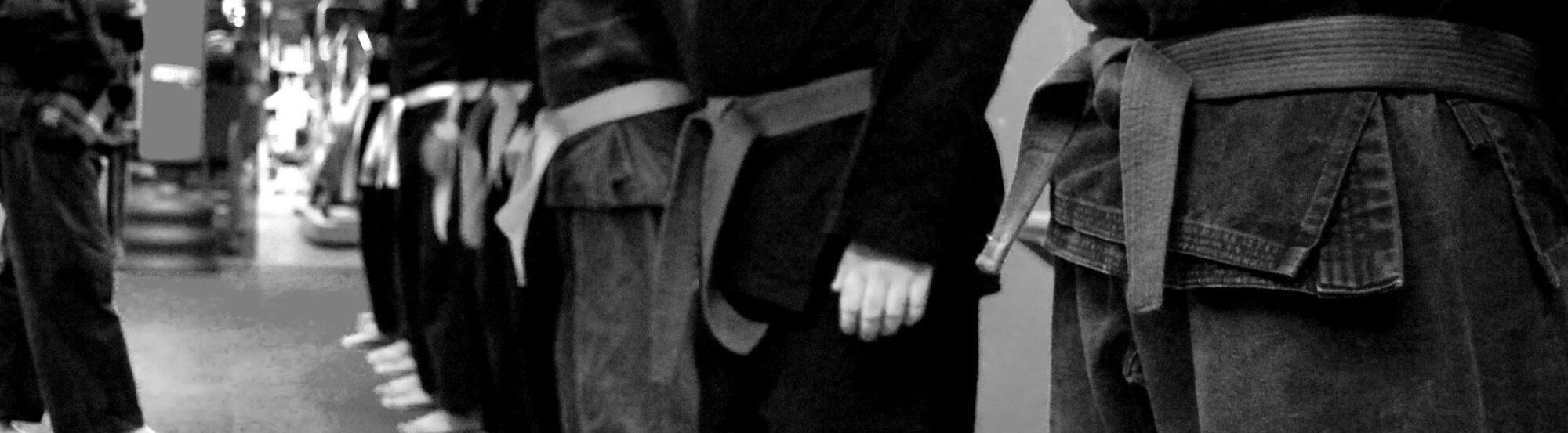 Ju Jitsu Pomezia